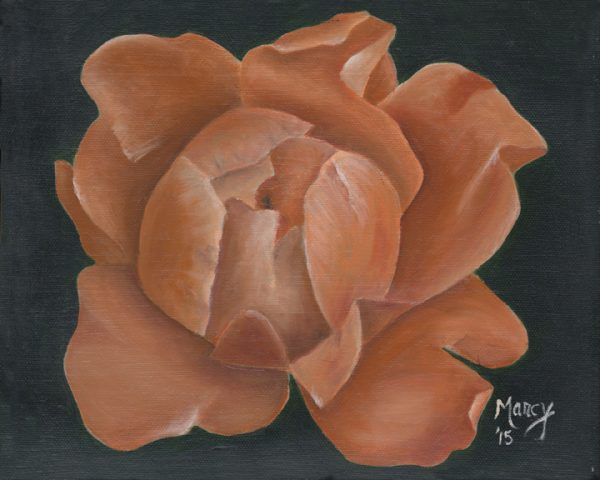 This peony, from a friend's garden, was the impetus to my flower series that now encompasses about 12 paintings.