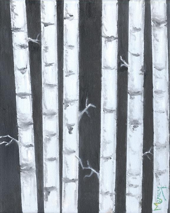 Birch Trees at Night